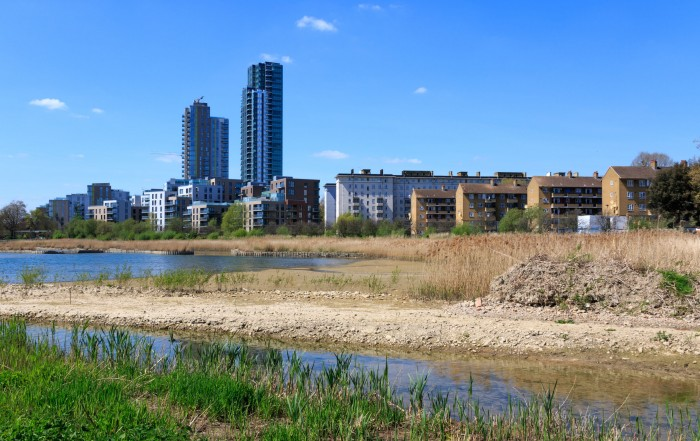 58415596 - newly-opened woodberry wetlands nature reserve at woodberry down in london on a sunny day